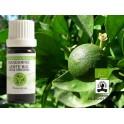 Huile essentielle Mandarine verte BIO (Floressence)